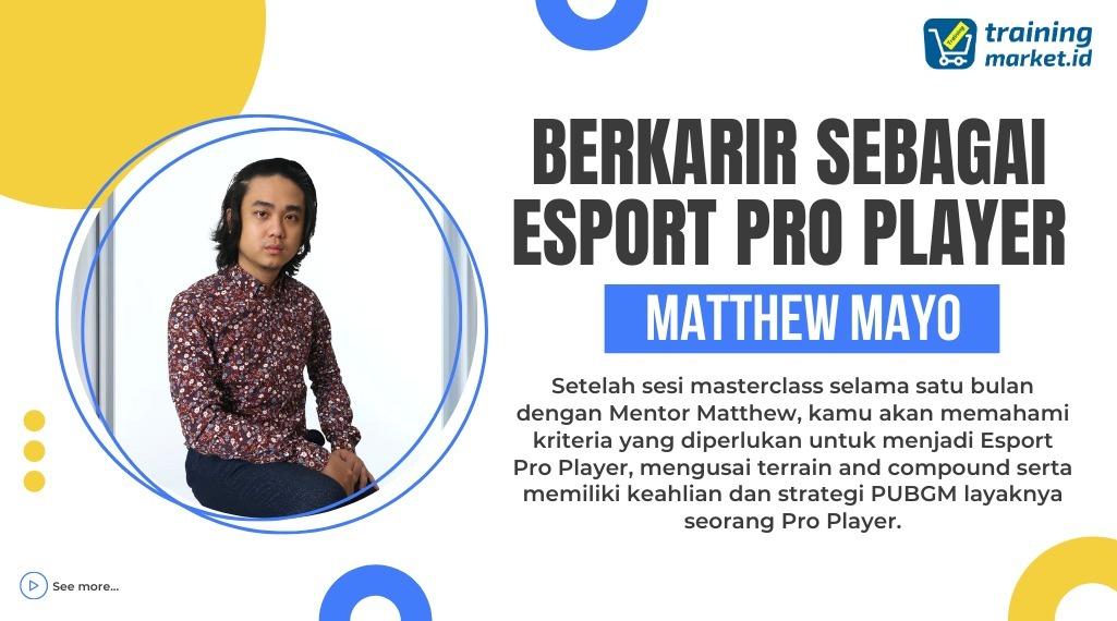 Berkarir Sebagai ESPORT Pro Player